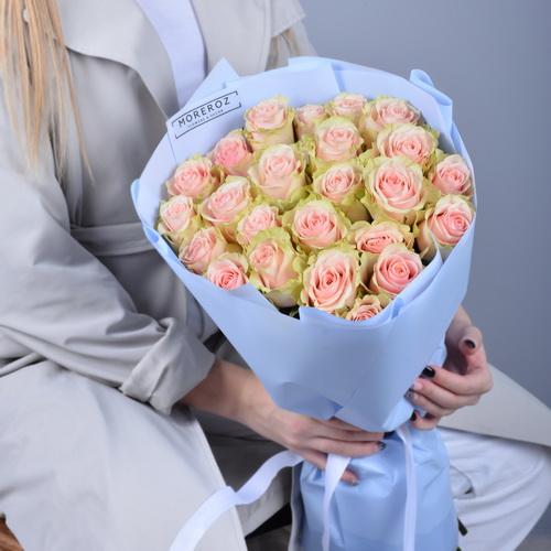 Розы с нежным градиентом